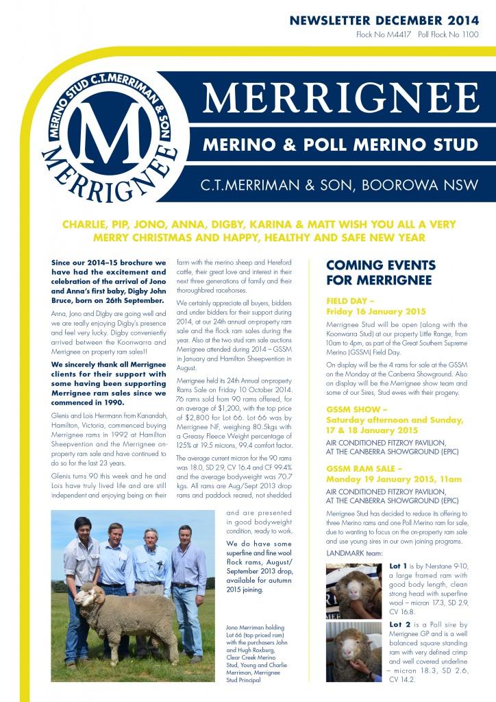 MER1428_MMS_Xmas14News_FA_Cover_HR3C